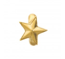 Rising Star Or Charm 1525