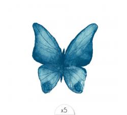 Tattoo LOVELY SIOOU Un délicat papillon bleu façon aquarelle dessiné par l'artiste lyonnaise Aurélie Richard. DVC07