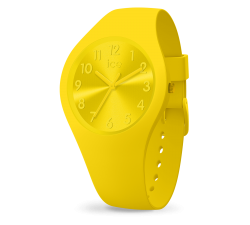 Montre ICE WATCH ICE colour - Citrus SMALL 34 MM 017908